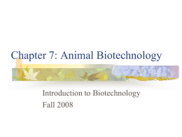 Chapter 7: Animal Biotechnology