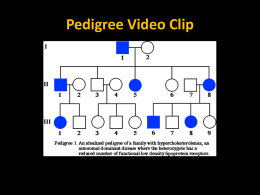 Pedigree Video Clip What is a pedigree?