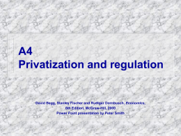 Chapter 19 Privatization and nationalization