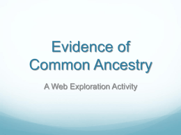 Evidence of Common Ancestry