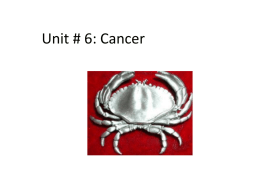 Unit # 6: Cancer