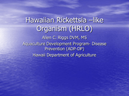 Health Care for Koi - University of Hawaii
