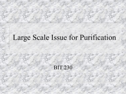 Large Scale Issue for Purification