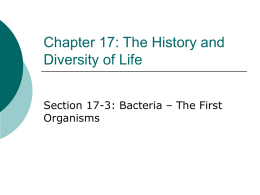Chapter 17: The History and Diversity of Life