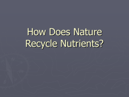 How Does Nature Recycle Nutrients?