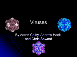 Viruses - The Fenn School