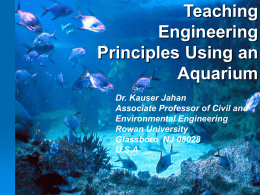 Engineering Aspects of An Aquarium
