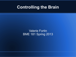 Controlling the Brain Current Methods