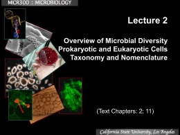Lecture 1 Introduction, History and Microscopy