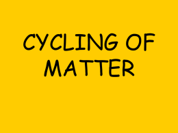 Nutrient Cycles for blog