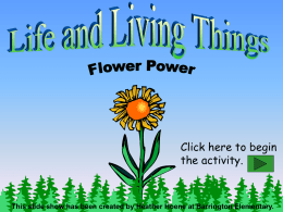 Life and Living Things: Flower Power