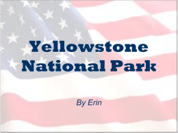 Yellowstone National Park - Marshfield Primary School