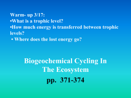 Biogeochemical Cycling In The Ecosystem pp. 371