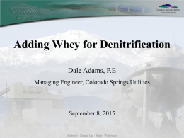Adding Whey for Denitrification