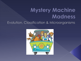 Mystery Machine Madness