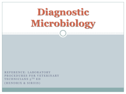 Diagnostic Microbiology plus imagesx