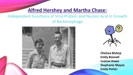 Independent Functions of Viral Protein and Nucleic Acid in Growth of