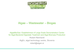 Presentation at Bioenergy Australia 2016 (Brisbane