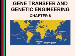 gene transfer and genetic engineering