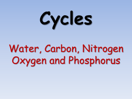 Cycles - ScienceGeek.net