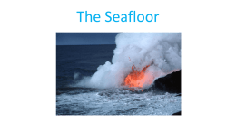 The Seafloor
