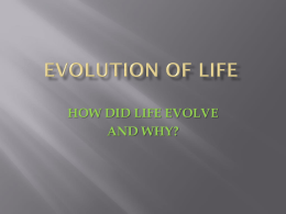 EVOLUTION OF LIFE - Phoenix Central School District