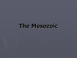 The Mesozoic - This Old Earth