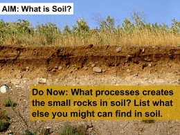 Do Now: What processes creates the small rocks in soil?