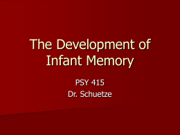 The Development of Infant Memory