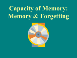 Capacity of Memory: Memory & Forgetting
