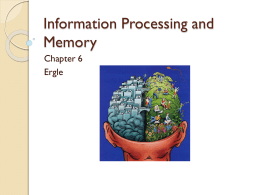 Ch 6- Memory and Cognitive Processingx