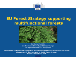 EU Forest Strategy supporting multifunctional forests