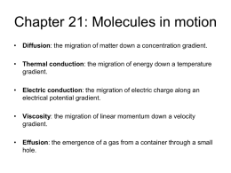 Molecular Motion in Gases