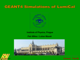 Preliminary results of LumiCal simulation
