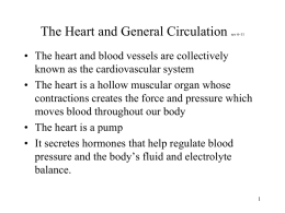 The Heart and General Circulation