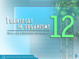 Chapter 12 Transport in Organisms