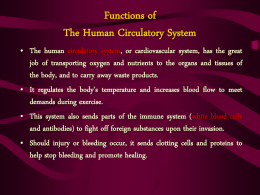 Functions of The Human Circulatory System