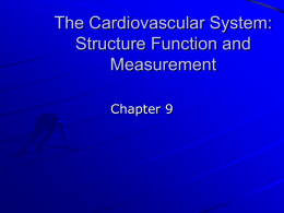 The Cardiovascular System: Structure Function and Measurement