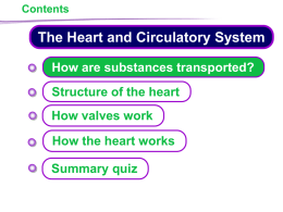 KS4 Heart and Circulatory System