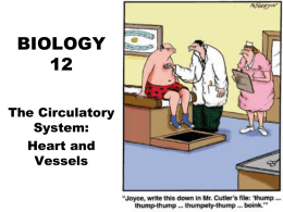BIOLOGY 12 - Circulation Heart and Vessels