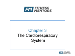 Chapter 3 - Fitness Mentors