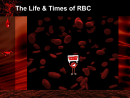Life & Times of RBC (powerpoint)