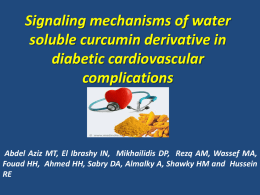 Signaling mechanisms of water soluble curcumin derivative in