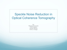 Speckle Noise Reduction in Optical Coherent Tomography