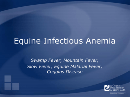 Equine-Infectious-Anemia - The Center for Food Security and