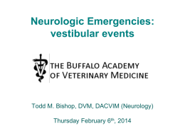 Vestibular disease - Buffalo Academy of Veterinary Medicine