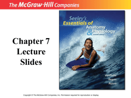 Chapter 7-The Muscular System
