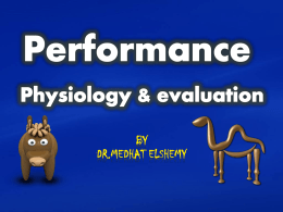 Performance Physiology & valuation