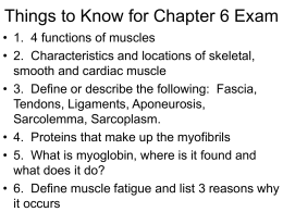 Things to Know for Chapter 6 Exam