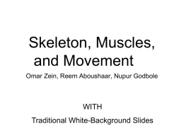 Skeletal and muscular systems[1]